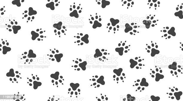 Pet paw vector seamless pattern with flat icons black white color vector id1198380866?b=1&k=6&m=1198380866&s=612x612&h=3wr0eafqavwsx65c7yqjm0x3vdlw5au eibkp02utpe=