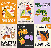 Pets posters and banners set with reptiles, fishes, stuffs for dog, cat, birds, rodents isolated vector illustration
