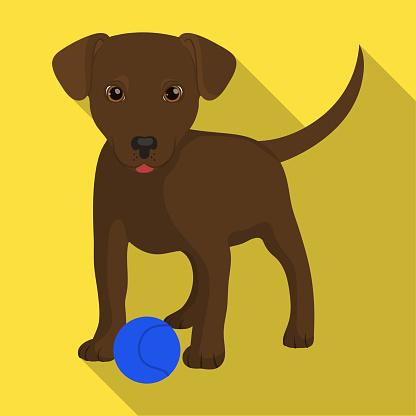 Huisdier Puppy Hondje Met Een Bal Huisdier Hond Zorg Één Pictogram In Vlakke Stijl Vector Symbool Stock Illustratie Web Stockvectorkunst en meer beelden van Betasten