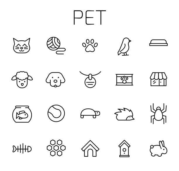 stockillustraties, clipart, cartoons en iconen met huisdier verwante vector icon set - chicken bird in box