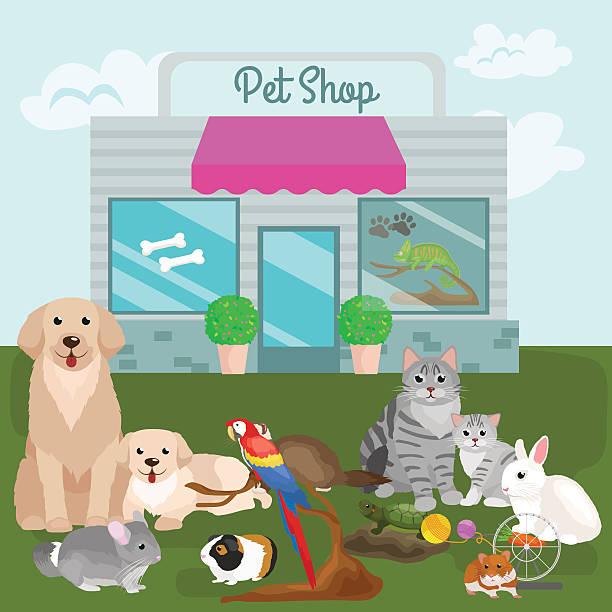 ilustraciones, imágenes clip art, dibujos animados e iconos de stock de pet shop, accessories and vet store. - animales de granja