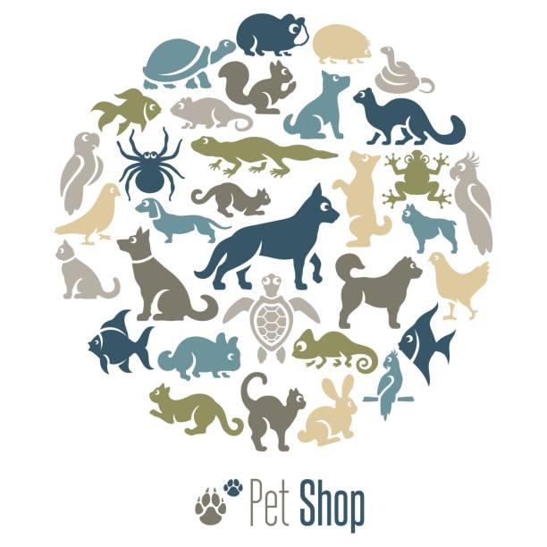 ilustraciones, imágenes clip art, dibujos animados e iconos de stock de collage de la tienda de mascotas - animales de granja