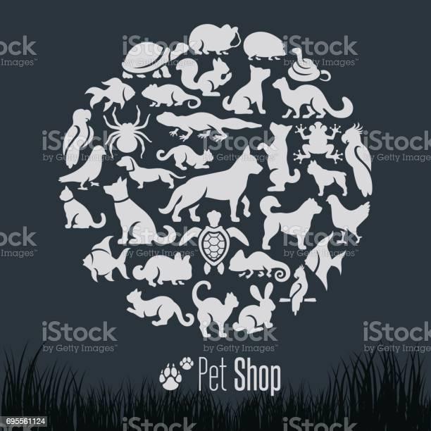 Pet shop collage vector id695561124?b=1&k=6&m=695561124&s=612x612&h=jscfzu j0twkiyepuvgloblg72wd7jljgxine3vtvay=