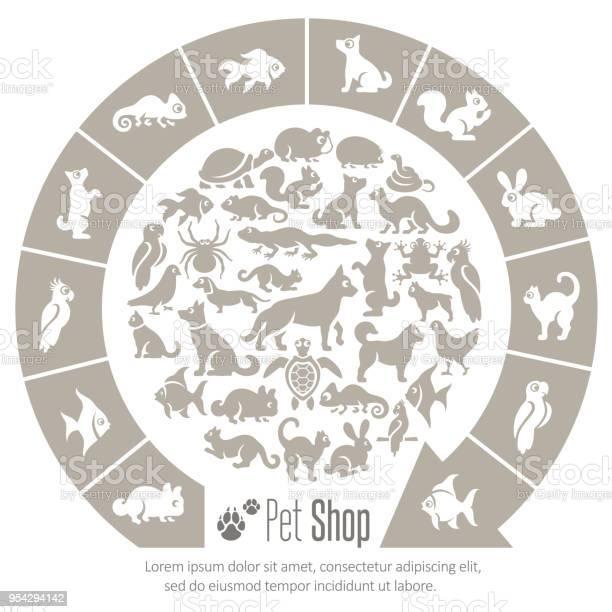 Pet shop collage vector id954294142?b=1&k=6&m=954294142&s=612x612&h= uvuyl7jvc1ovhdp8xkjbigslh arp0ddbxdd7rdsws=