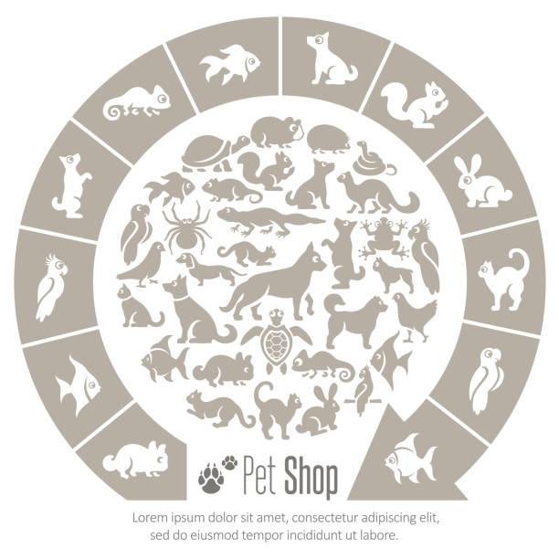 Pet Shop Collage vector art illustration