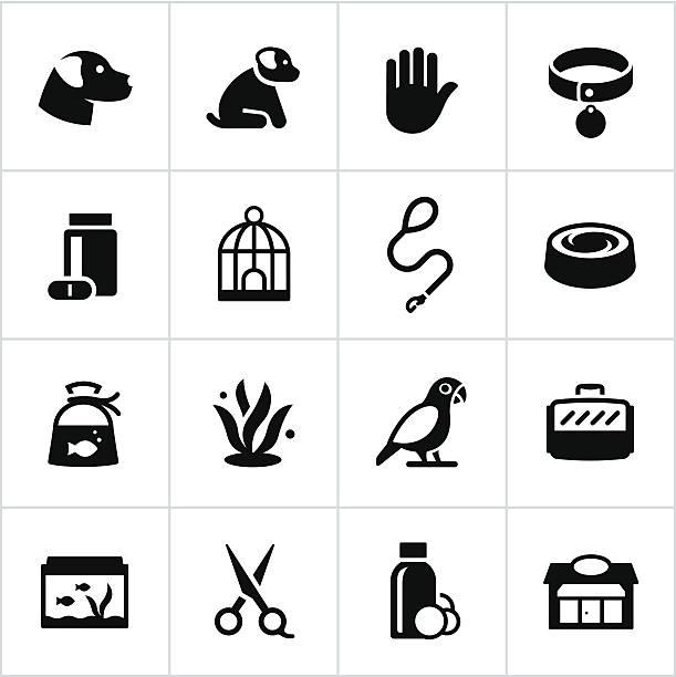 pet shop symbole - hundehalsbänder stock-grafiken, -clipart, -cartoons und -symbole