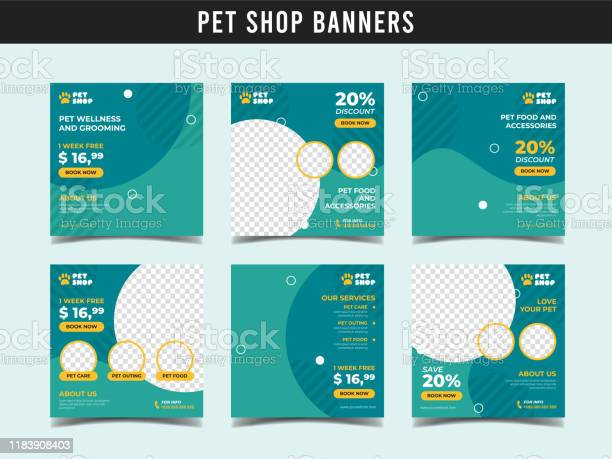 Pet shop square banner template promotional banner for social media vector id1183908403?b=1&k=6&m=1183908403&s=612x612&h=j3hbabomzinxe9dxfqpyvcac7dggs6nwkne3h1ho  k=