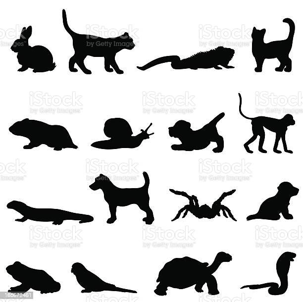 Pet silhouette collection profiles vector id165672461?b=1&k=6&m=165672461&s=612x612&h=jzklybmazxog1iojc9egly99df1xdvqkgpywydzvzbq=