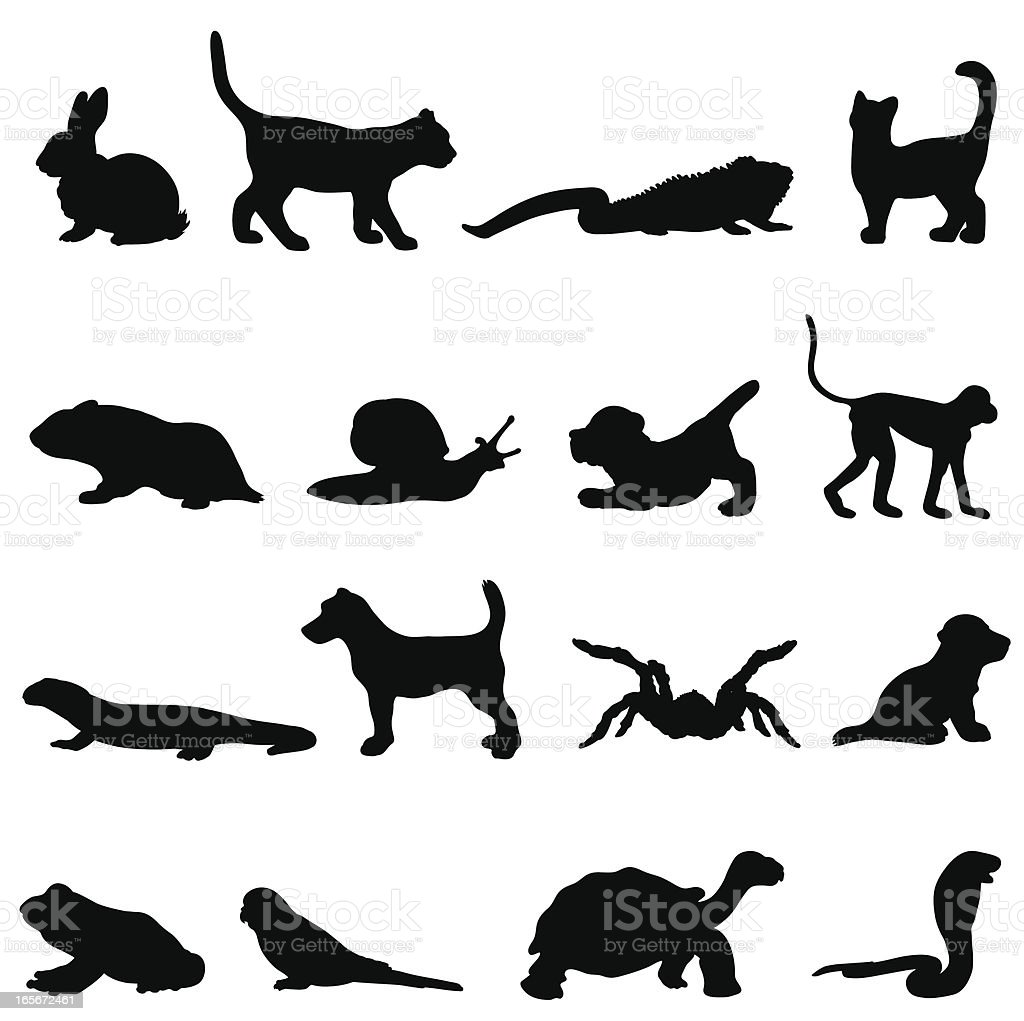 Pet silhouette collection profiles vector art illustration