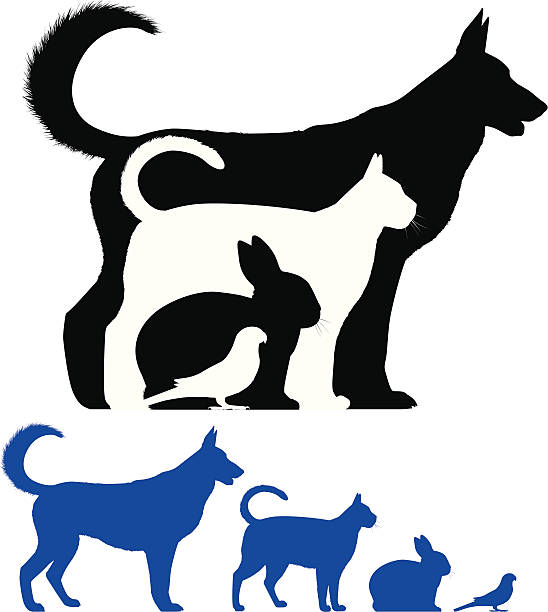 Pet Silhouette Profile of a dog, cat, rabbit and bird. This file is layered and ready for editing. animal shelter stock illustrations