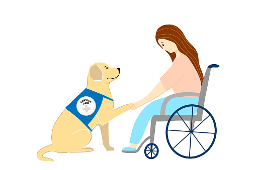 Pet Therapy Poster with Woman in a wheelchair and Labrador Vector Illustration