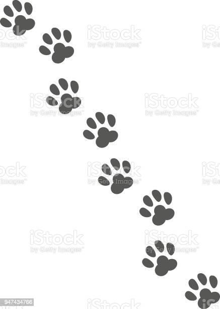 Pet track vector id947434766?b=1&k=6&m=947434766&s=612x612&h=3cvo1ogs1qlmtlr2ui8hwbfouveh5to5osx51houjpu=