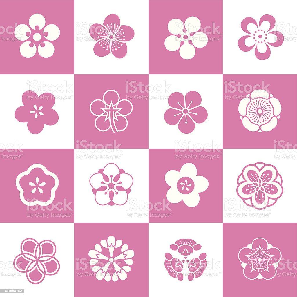 Petal patterns of plum blossom vector art illustration