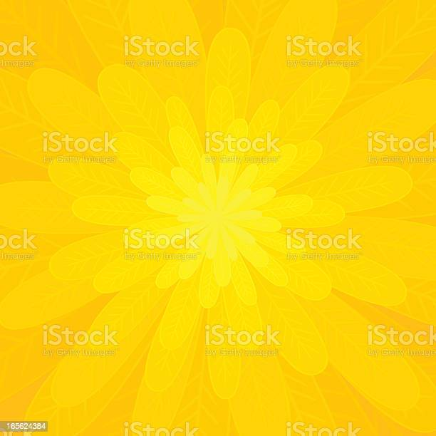 Petals Of A Bright Yellow Flower Stock Illustration - Download Image Now