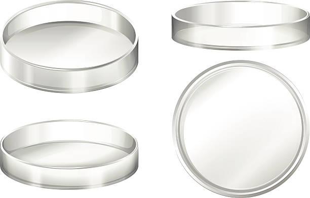 Petri dish Petri dishes on a white background petri dish stock illustrations