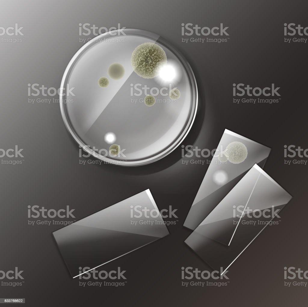 Petri dish with molds vector art illustration