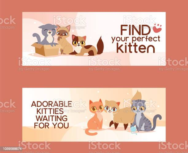 Pets adopt find friendship poster vector illustration love kitten and vector id1059588674?b=1&k=6&m=1059588674&s=612x612&h=dkturlb8mllrfdjbfdn3xxbfk4eyvpgunpvwinrvfu0=