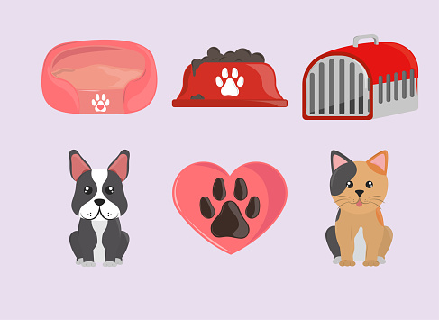 pets and accessory set