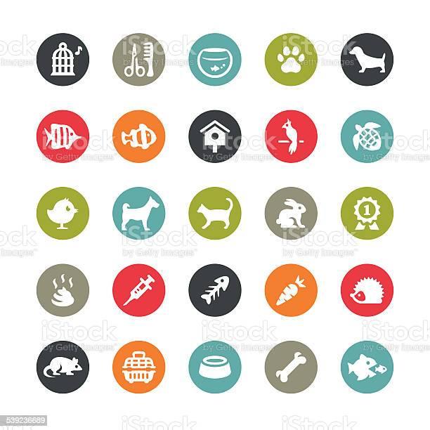 Pets and grooming icons ringico series vector id539236689?b=1&k=6&m=539236689&s=612x612&h=0rgsjf9gltntseoyr2zujcabgqdq4iecscenutgnifs=