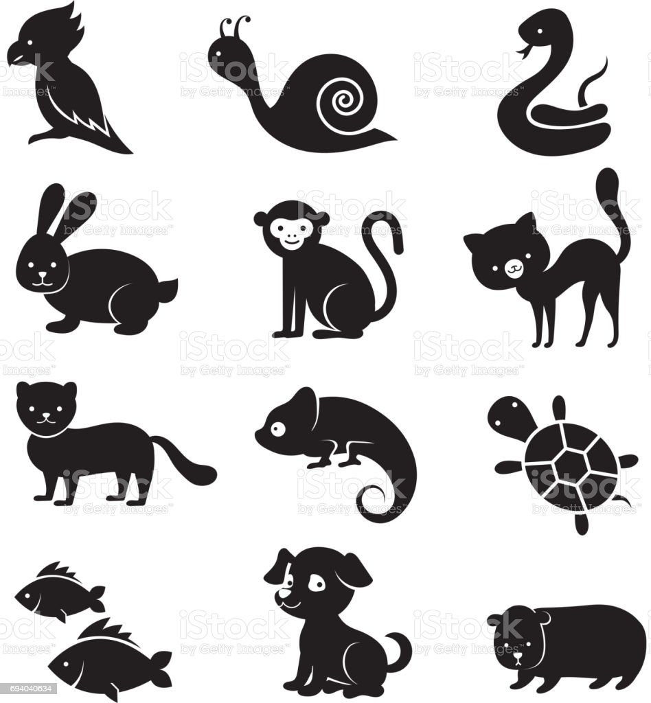 Pets And Home Animals Vector Icons Stock Illustration