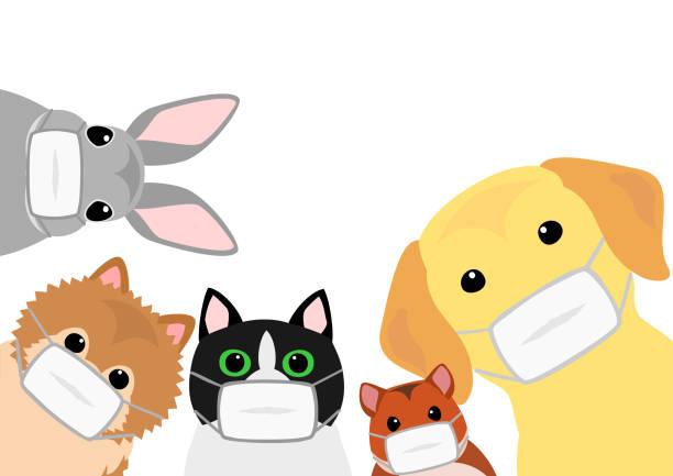 ペットの動物は、医療マスクを持つ ベクターアートイラスト