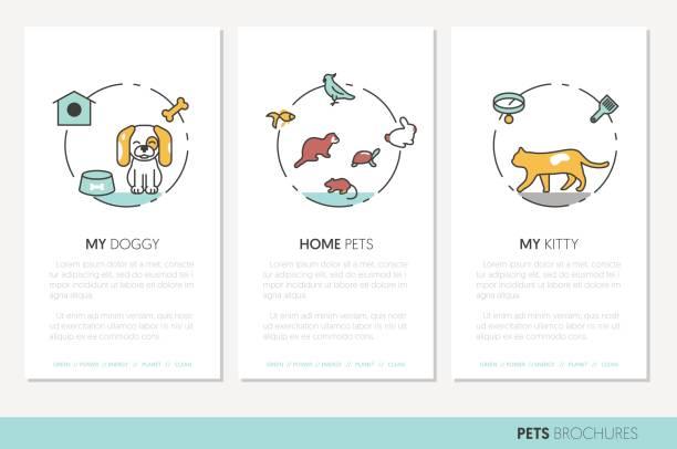 haustiere business broschüre. lineare dünne linie symbole - hamsterhaus stock-grafiken, -clipart, -cartoons und -symbole
