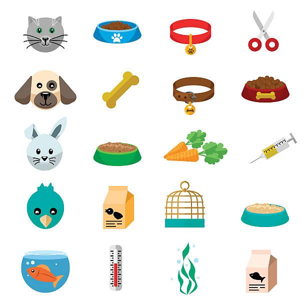 pets care flat illustration - hundehalsbänder stock-grafiken, -clipart, -cartoons und -symbole