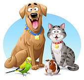 Vector illustration of a cheerful dog, a gray striped cat, a green budgie and a guinea pig, sitting next to each other, looking at the camera. Concept for pets, domestic animals, veterinarians and pet shops.