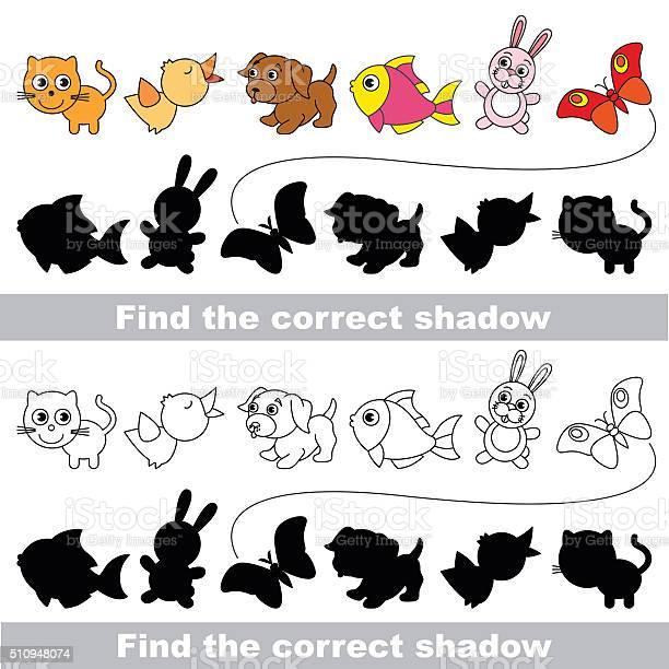 Pets collection find correct shadow vector id510948074?b=1&k=6&m=510948074&s=612x612&h=653uvmazv7iezjpuoaecfvxpsfrmizwppuoqnvb7mxy=