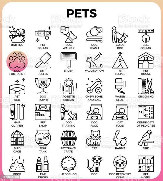 Pets concept detailed line icons vector id669865958?b=1&k=6&m=669865958&s=612x612&h= awe2h6qekzrmo5eajw9z2vweqf 8jamxmtat76ills=