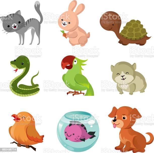 Pets domestic animals vector flat icons vector id685498714?b=1&k=6&m=685498714&s=612x612&h=83z6w2j2ptldf1nosbp57wiyuhnbl6ke4gefmaegewe=