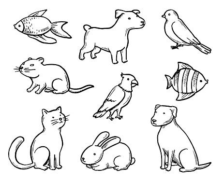 Pets Doodle Set