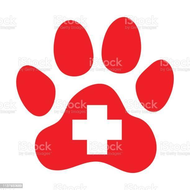 Pets first aid veterinarian symbol vector id1137930689?b=1&k=6&m=1137930689&s=612x612&h=k4wykfeduspqbkidl3kqfpn7ajkikghvvknz ftvf9o=