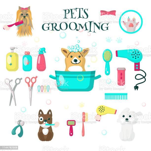 Pets grooming set vector flat isolated illustration vector id1144782508?b=1&k=6&m=1144782508&s=612x612&h=chyxfuvrje6fjgzwcvvgyulf ykxq5repxs586jptgq=