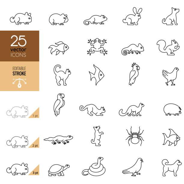 Pets Icon Set. Editable Stroke Pets Icon Set. Editable Stroke amphibians stock illustrations