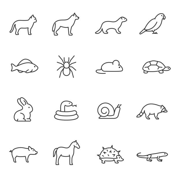 pets, icon set. home animals, linear icons. editable stroke - snail stock illustrations