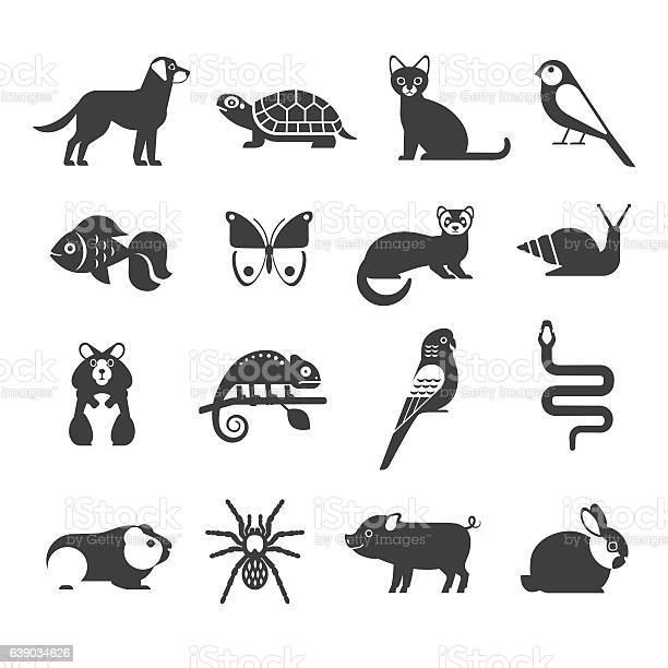 Pets icons set vector id639034626?b=1&k=6&m=639034626&s=612x612&h=nenxyptcauze2oa4bbsmi2n9f5fsmylo1odxn0jrq5e=
