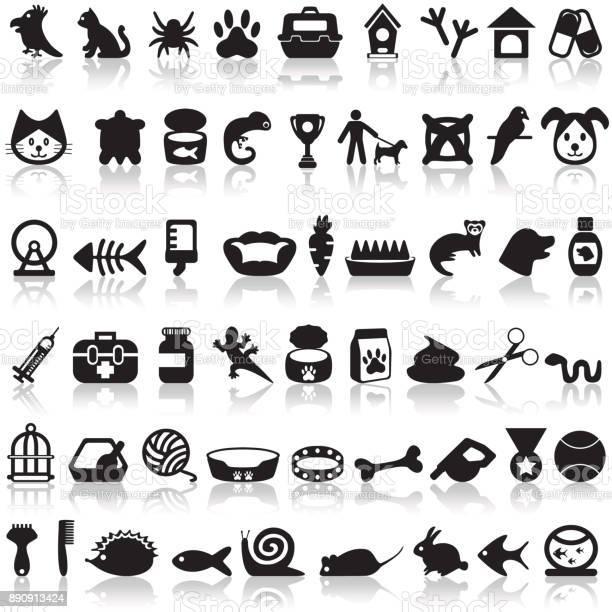 Pets icons set vector id890913424?b=1&k=6&m=890913424&s=612x612&h=wjhoyxt3ayra6ixbjfpt2kuuoxleovfrgxoxaq5m9ko=