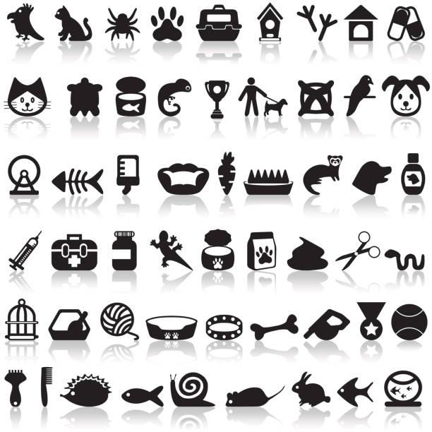 haustiere symbole set - hamsterhaus stock-grafiken, -clipart, -cartoons und -symbole