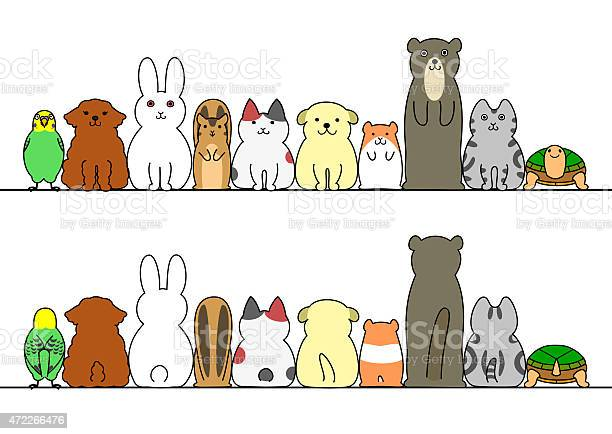Pets in a row with copy spacefront and back vector id472266476?b=1&k=6&m=472266476&s=612x612&h=6cra48skihwfebkp eqclfpdfgmwbbsbxhv5oi8hff8=