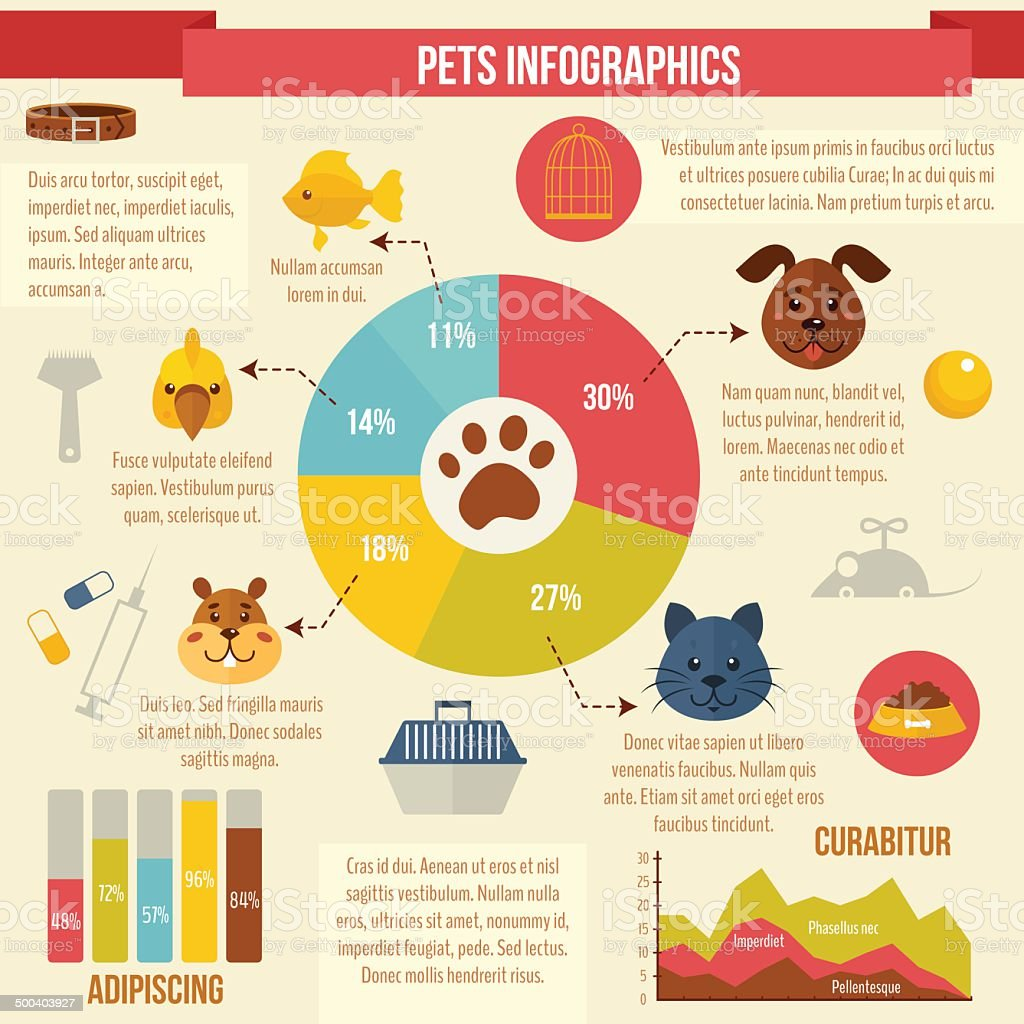 Pets infographics vector art illustration