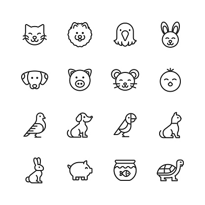 Pets Line Icons. Editable Stroke. Pixel Perfect. For Mobile and Web. Contains such icons as Cat, Kitten, Dog, Puppy, Eagle, Bird, Bunny, Rabbit, Mouse, Chick, Golden Fish, Pig, Tortoise.