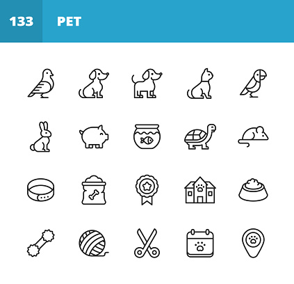 Pets Line Icons. Editable Stroke. Pixel Perfect. For Mobile and Web. Contains such icons as Bird, Dog, Mouse, Pig, Parrot, Tortoise, Pet Collar, Grooming, Pet Bowl, Veterinarian, Animal Paw.