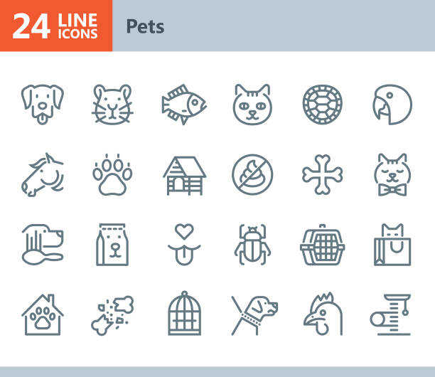 pets - line vector icons - pets stock illustrations, clip art, cartoons, & icons