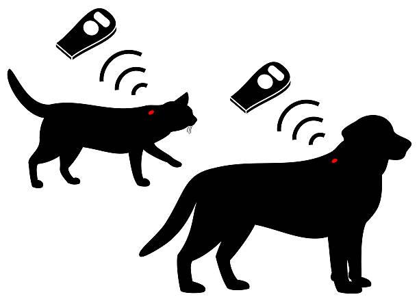 ペットの microchip ベクターアートイラスト