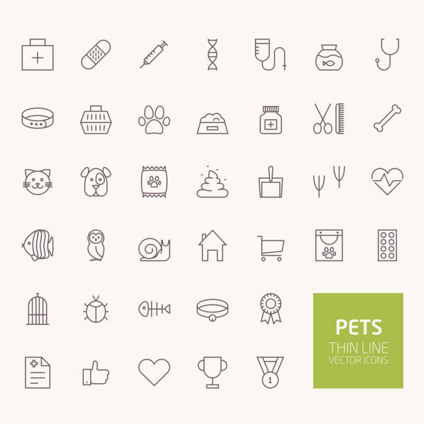 pets outline icons for web and mobile apps - veterinarian stock illustrations, clip art, cartoons, & icons