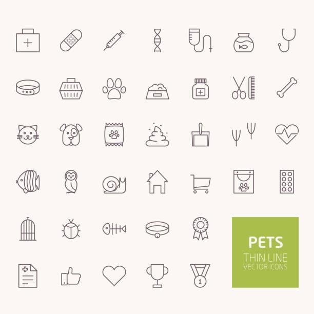 ilustrações, clipart, desenhos animados e ícones de animais de estimação de esboço de ícones para web e aplicativos móveis - veterinário