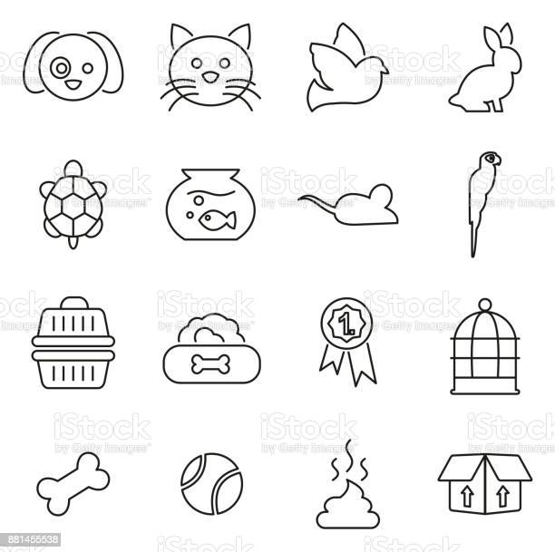 Pets pets accessories icons thin line vector illustration set vector id881455538?b=1&k=6&m=881455538&s=612x612&h= zpdociakaxyhuyeweos0k i7bk7ab ueu0hablloq8=