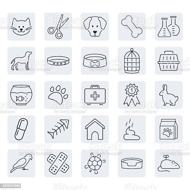 Pets related icon set in thin line style vector id530832698?b=1&k=6&m=530832698&s=612x612&h=e3kfypo7v7 bpayxt2updw5paffad3r2qqtc0ekbwbo=