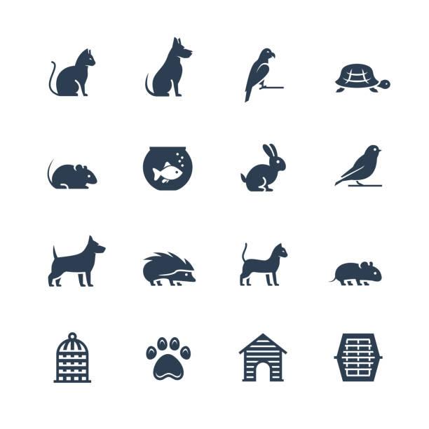 haustiere im zusammenhang mit vektor-icon-set im glyph-stil - hamsterhaus stock-grafiken, -clipart, -cartoons und -symbole